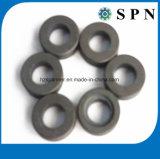 De aangepaste Industriële Permanente Gesinterde Magneet van het Ferriet voor Motoren