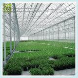 농업을%s 성장하고 있는 천막 시스템 녹색 집