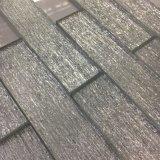 벽 훈장을%s 가장 새로운 수정같은 회색 유리 벽돌 도와