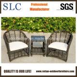Мебель алюминиевой рамки синтетическая Wicker напольная (SC-B8955)