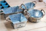 Het euro Gegalvaniseerde Kruid dat van het Metaal van de Stijl Tin Pot plant