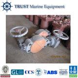 Ottone del fante di marina del fornitore|Valvola di angolo dell'acciaio inossidabile
