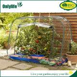 Invernadero vegetal de jardín de Onlylife
