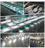 10W/20W/30W/50W/100W de la seguridad del sensor de movimiento de proyectores de luz LED Iluminación LED de inundación