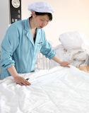 Taihu снег шелк стандарта Oeko-Tex 100 постельное белье шелк постельное белье из шелка с малым проекционным расстоянием шелка одеяло