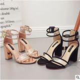 Оптовая торговля необработанными пластика из прозрачного стекла с High-Heeled римские сандалии