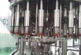 Terminar la planta de embotellamiento del jugo de la pulpa