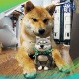 Картонная коробка собака Беспроводная мини-громкие динамики Bluetooth для детей друзья подарком игрушки