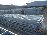 Irland heißes eingetauchtes galvanisiertes 12FT 14FT Stahlgefäß-Bauernhof-Standardgatter