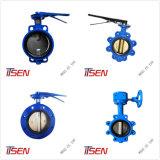 Diversos tipos de hierro fundido la válvula de retención de la oblea/Swing/Silent/Bola/Tipo de elevación