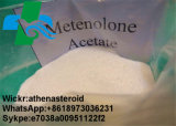 Acetato de los esteroides Primonolone/Methenolone de la pureza elevada para el Bodybuilding