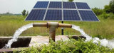 Haute puissance 30V 260W /Poly panneau solaire