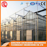 Quadrat-Landwirtschaft Handelsgemüse verwendetes PC Blatt-Gewächshaus