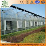 С высоким качеством Сборные стальные конструкции из поликарбоната (PC) выбросы парниковых газов