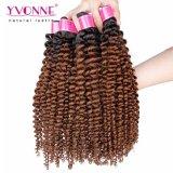 Colore crespo T1b/4 dell'arricciatura Remy Ombre dei capelli brasiliani all'ingrosso di Yvonne