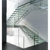 Escaleras flotantes de cristal de la escalera DIY