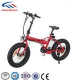 脂肪質のタイヤの電気バイクを折る20inch