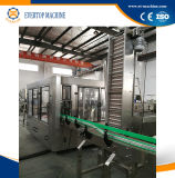 Bouteille en plastique de remplissage automatique de ligne de production de jus