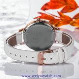 Correa de cuero OEM Dama relojes de cuarzo Wist Ver señoras WY-17029(A)