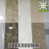 De standaard Ceramische Tegel van de Muur, Ceramische Tegel 30*60cm van de Vloer