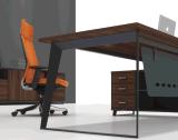 Erstklassiger moderner Entwurfs-kosteneffektiver Executivmanager-Schreibtisch