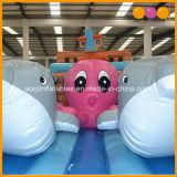 2 dans 1 bateau de pirate de parc d'attractions gonflable avec la glissière (AQ01265)