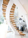 Escalera del arco/escalera de madera/Escalier de madera/escalera curvada