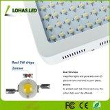 120PCS 5W Pflanze der Chip-600W LED wachsen Licht ausgebautes volles Spektrum, das Innen-LED mit Cer RoHS FCC-Zustimmung hell wachsen