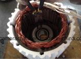 генератор постоянного магнита AC низкий Rpm 2kw 48V одновременный (SHJ-NEG2000)