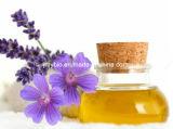 Petróleo essencial do tomilho fresco puro de 100% para o cuidado de pele