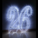 Best Sellers 3 fios a corda de LED de luz para Holiday acender pular corda