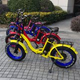 Electric Bike Manufacturer in Clouded