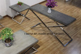 Nachgeahmte hölzerne SpitzenEdelstahl-Sofa-Tisch-Seiten-Tisch-Enden-Tisch-Wohnzimmer-Möbel