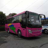 Rhd/LHD 39-43seats 9m 155-170HP 관광 버스 정면 후방 엔진