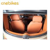 Veicolo dell'automobile elettrica di Saeters del nuovo modello due mini da vendere