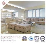 Muebles del hotel de lujo con los muebles de la sala de estar fijados (YB-WS-26)