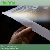 Papel doble de la foto del PE 260GSM con tinta del solvente de Eco