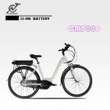 bicicleta eléctrica del estilo de 36V 350W con la batería de litio trasera del estante