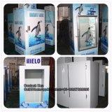 Стеклянные двери льда Merchandiser для установки внутри помещений