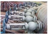 Tipo válvula do ângulo de Dn100/Pn16 Wcb de controle da pasta
