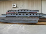 Gruppo di lavoro della struttura d'acciaio con la gru a ponte