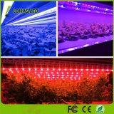 Las luces de crecimiento para las plantas 12W LED T8 Tubo de luz de la planta crezca el aparejo de las lámparas de crecimiento para plantas de interior el cultivo hidropónico de gases de efecto