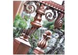 Portello lussuoso di qualità superiore del cancello dell'acciaio inossidabile di qualità per il cortile