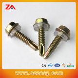 Leite DIN ISO Standard de l'écrou de vis de la machine et de la vis de la Chine fournisseur