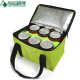 6 bidons/isolés/bouteille/déjeuner/pique-nique/épaule/sacs en nylon/plus frais (TP-CB220)