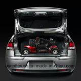 Самокат удобоподвижности автомобиля корабля высокого качества дешевый электрический для людей
