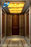 주거와 가정 엘리베이터를 위한 Toyon 별장 상승