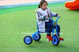 El modelo nuevo 2017 de la promoción de la Navidad embroma el triciclo para los niños