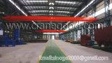 Singola gru di Hiost della costruzione della trave di alta qualità