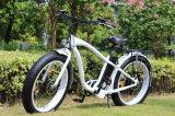 bici eléctrica grande del martillo de potencia 750W